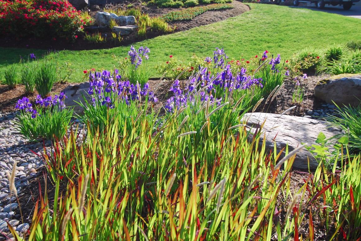 Garden Design in McLean, VA