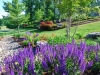 Landscape & Garden Designs in Montgomery County, MD