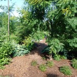 Mulching & Landscaping Annapolis MD
