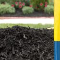 What Mulch Can Do For Your Plants