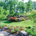 Reasons to Use a Professional Landscaping Service