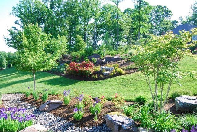 Professional Landscape Designs