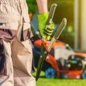 Why Businesses Should Hire Professional Landscapers